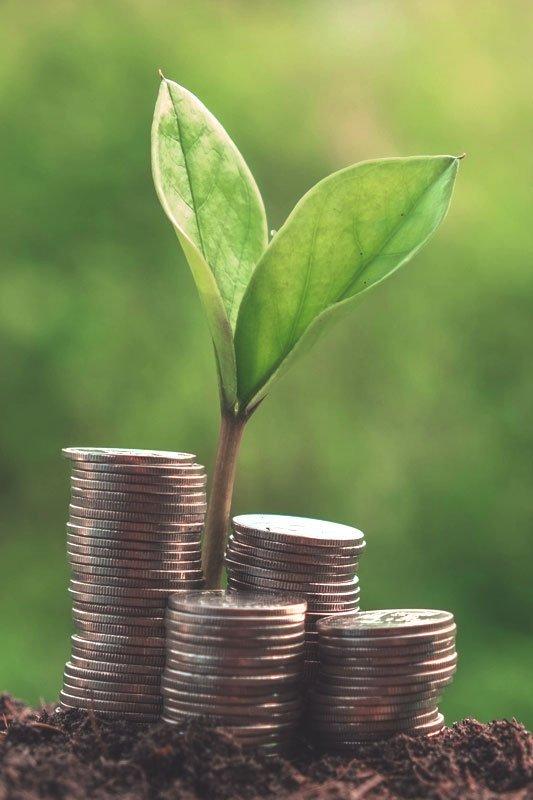 Financial Wealth Management Advisor Bedford